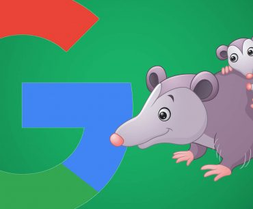 الگوریتم موش کور